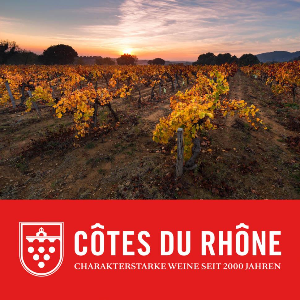 Vorstellung der großen Auswahl an Rhône Weinen in München