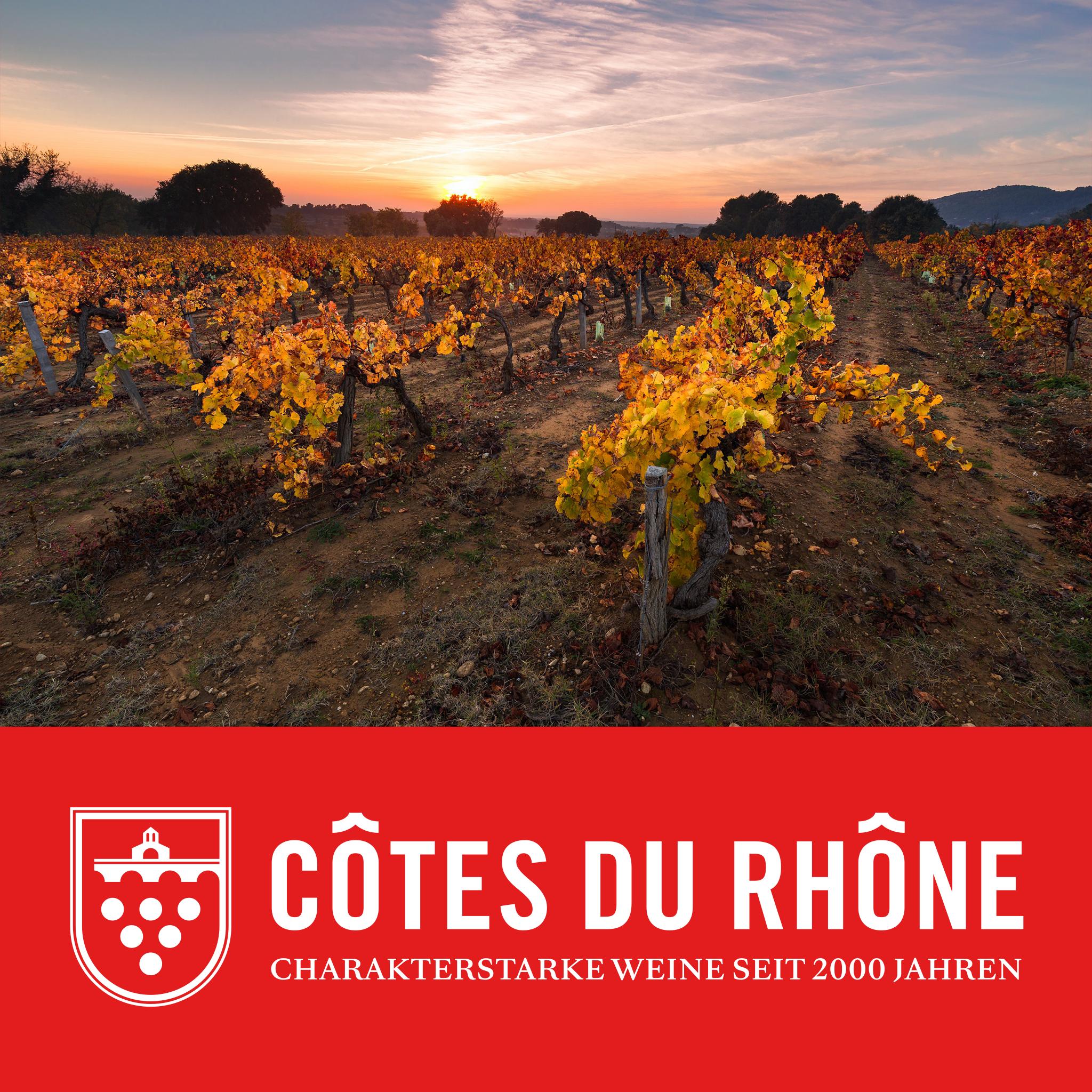 Rhône Wine Festval